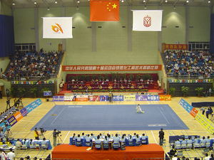 A typical wushu competition, here represented ...