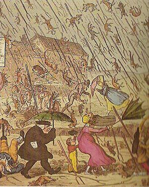 Resultado de imagen para lluvia de ranas biblia