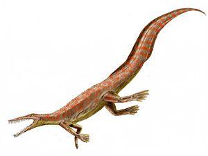 Mesosaurus, pencil drawing, digital coloring