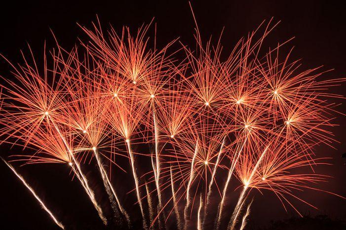 File:Exploding Flower Bed fireworks.jpg
