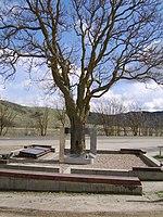 El James Dean Memorial en Cholame. Dean murió a unos 800 metros al este de este árbol.