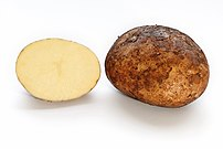 Potato and cross section.