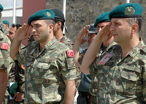Two Turkish soldiers salute (4699895014)