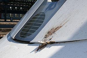 Bird strike on an ICE 3 high-speed train