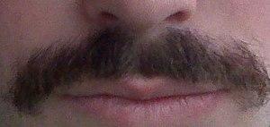Short, dark mustache