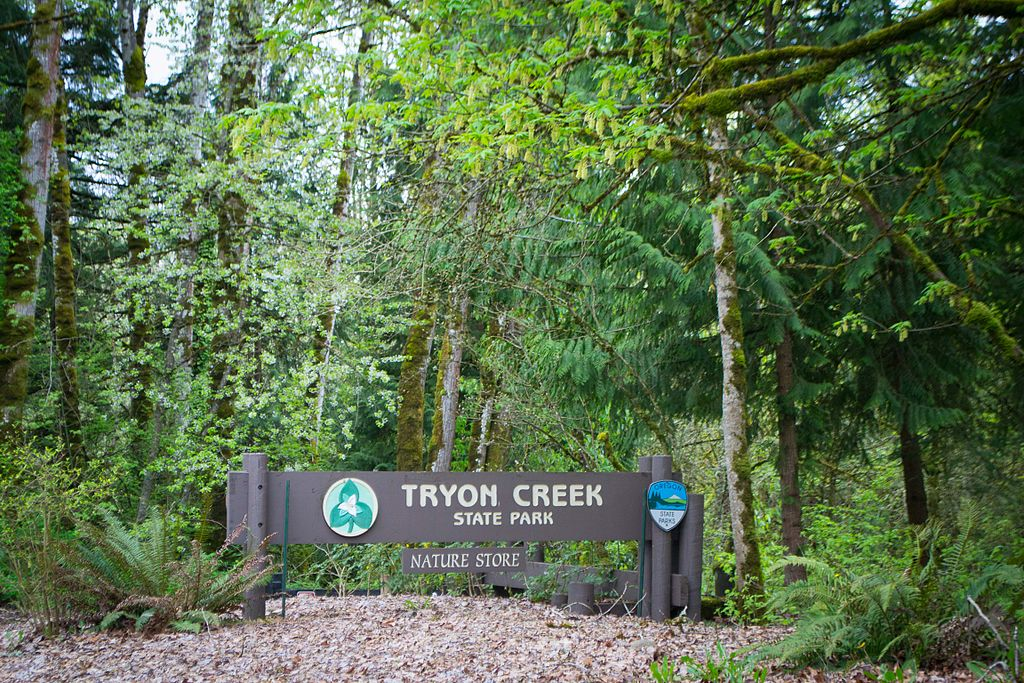 Tryon Creek State Park is the only state park in Oregon located in an urban setting.