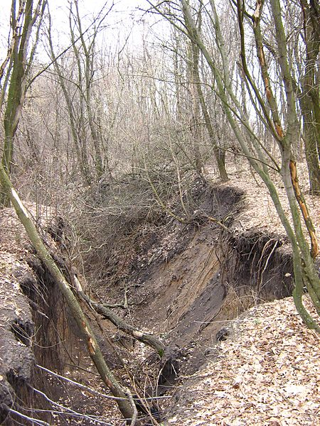 File:Gully in the Kharkov region.jpg