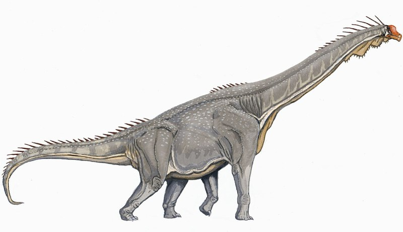 Accurate Brachiosaurus , How Famous Dinosaurs Really Looked Like