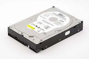Western Digital WD2500BB hard disk drive (250 ...