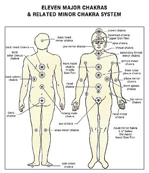 A description of the major chakras and minor c...