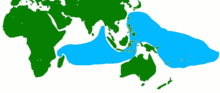 Ketam kenari terdapat pada kebanyakan pantai di daerah berwarna biru