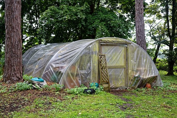 File:Easton Lodge Gardens, Little Easton, Essex, England ~ polytunnel hoop house.jpg
