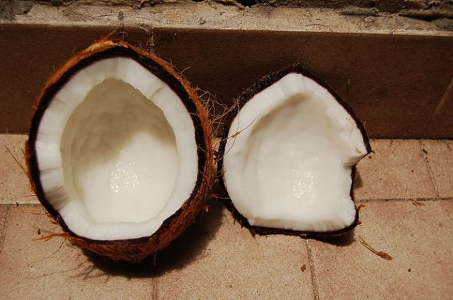 English: Coconut Français : Noix de coco