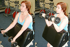 The supinated-forearm biceps curl is sometimes...