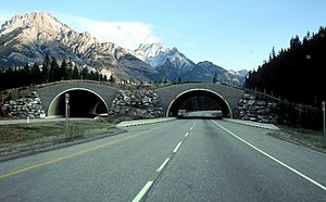 Trans-Canada Highway in Alberta, Canada, in th...