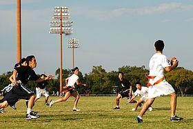 Lippupallo – Wikipedia