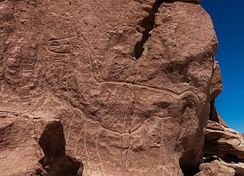 Petroglifos de Hierbas Buenas, Río Grande, Chile, 2016-02-05, DD 01