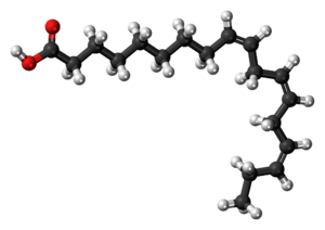 Ball-and-stick model of the α-Linolenic acid m...