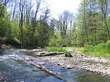 Im Tal der Rotach zwischen Weilermühle und Unterteuringen