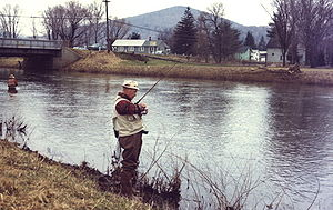 Trout fishing on Potato Creek, Smethport, PA.