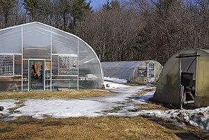 It's warm enough that the greenhouse ventilati...
