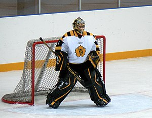 Swedish ice hockey goaltender Andreas Hadelöv ...