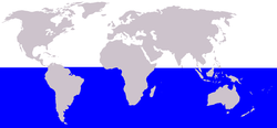 Habitat Paus Minke Antarktik