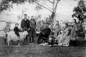 English: Tooth family gathering on the lawn A ...
