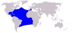 Verbreitungsgebiet des Zügeldelfins Stenella frontalis.PNG