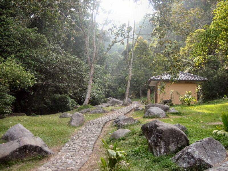 Berkas:Botanical garden - Cibodas - Indonesia 7.jpg