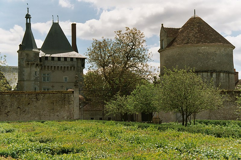 Castle of Talcy 05