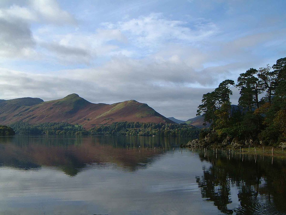 Cat Bells Wikipedia