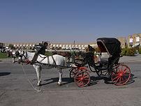 Horse and buggy (Naqsh-i Jahan Square)