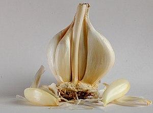 മലയാളം: Garlic