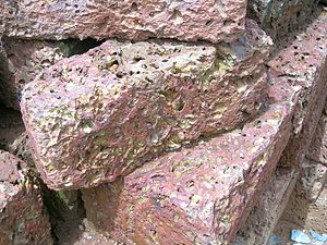 Laterite Bricks. From North Wayanad, Kerala, India
