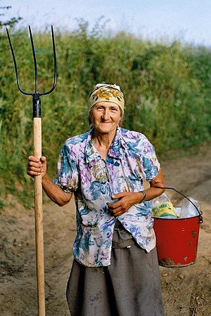 English: An old farmer woman, Eastern Europe.