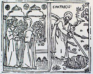 Born in the 4th century AD, St Patrick was cap...