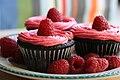 Chocolate Cupcakes with Raspberry Buttercream.jpg