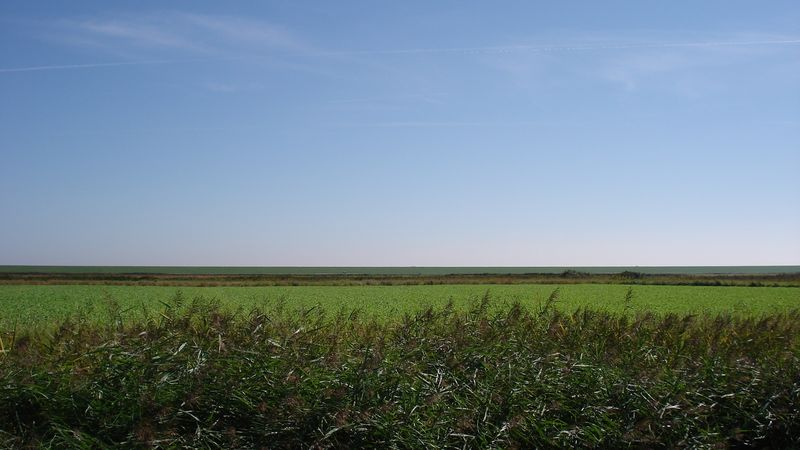 File:Holland countryside wide open plain.jpg