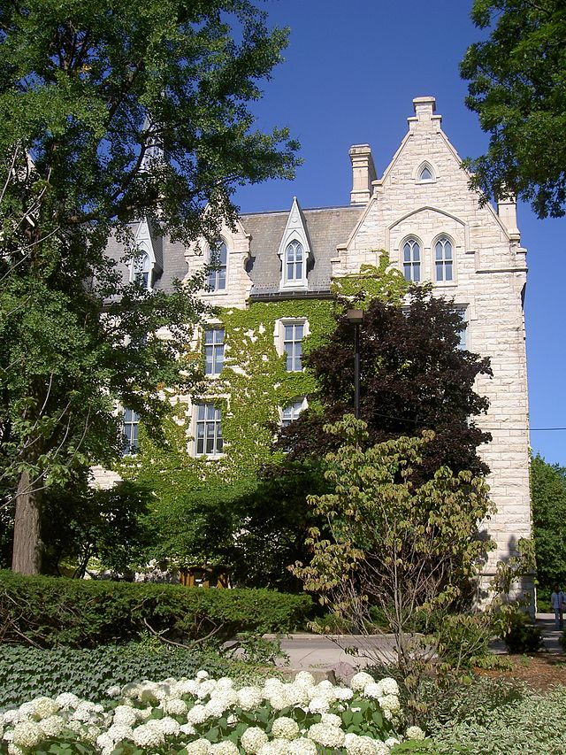 http://commons.wikimedia.org/wiki/Northwestern_University#mediaviewer/File:Northwestern_University,_ivy.JPG