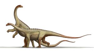 Saltasaurus (which means