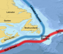 Grand Banks och Flemish Cap