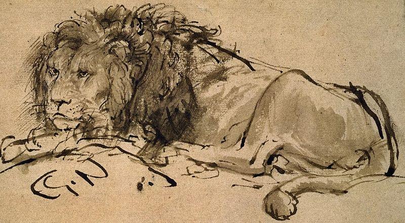 File:Rembrandt-A-Lion-Lying-Down-207063 detail.jpg