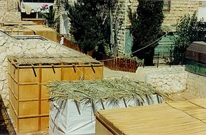 View of different types of sechach (sukkah roofs).