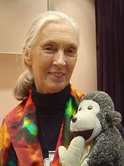 Jane Goodall - Supporter of gorillas