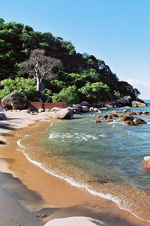 Shore of Lake Malawi