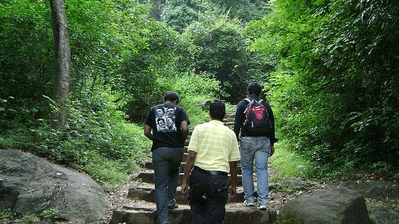 File:Passage through jungle Papanasam.JPG