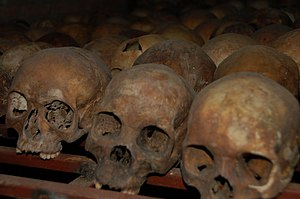 English: Skulls of victims from the Rwandan Ge...