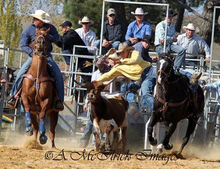 cowboys at Steer wrestling