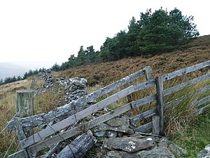 English: Wall and fence, The Neth Hill. An old...